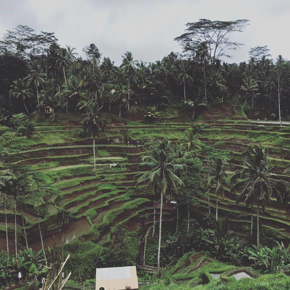 Ubud-Bali, pour ses paysages, son look à la Indiana Jones, la beauté de son peuple et son accueil chaleureux